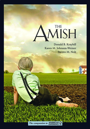 cover of the amish