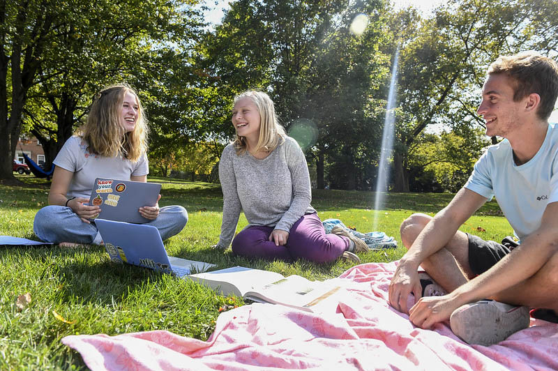 students studying in a field on a blanket