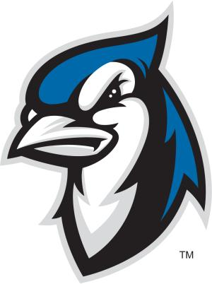 blue jay logo fierce bird looking to left